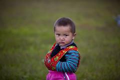 Xinjiang:Kalajun grassland (woOoly) Tags: china flowers spring chinese xinjiang prairie   kazakh ili yili zhongguo sinkiang  alpinegrassland 5dmarkii   kalajungrassland ilichina tekesi kalajunprairie