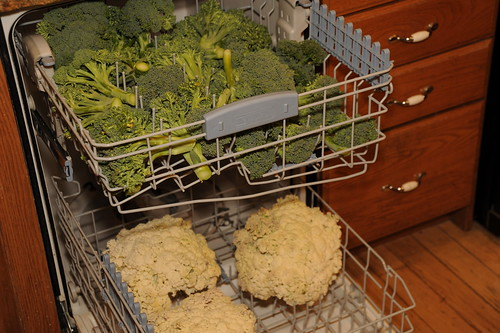 Dishwasher Method of Blanching