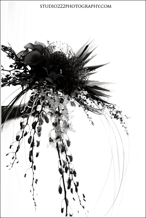 Studio 222 Photography   3679139009 6f136e1e60 o Carl & Lillian: Wedding at the Celebration Hotel