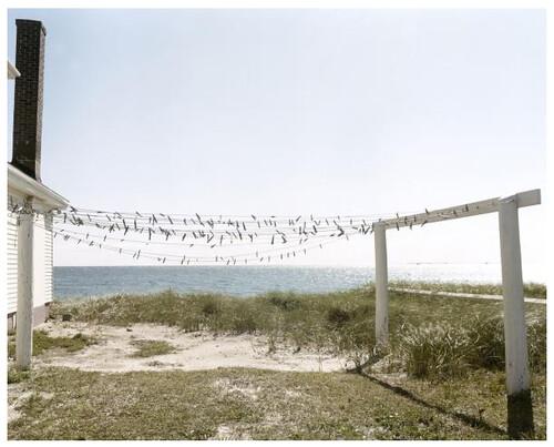Joel Meyerowitz: Provincetown