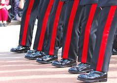 March on.. (pranav_seth) Tags: london uniform palace queen buckinghampalace touristy marching soldiers guards buckingham changingofguards