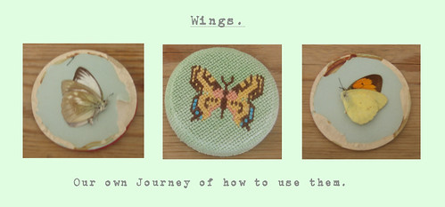 Wings copy