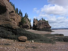 Low Tide - Hopewell Rocks