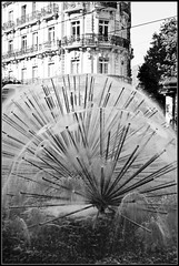 Fontaine  Grenoble en Isre (Uolir) Tags: france architecture alpes grenoble eau europe lips cyrille fontaine ville immeuble jetdeau rhone isre rubain