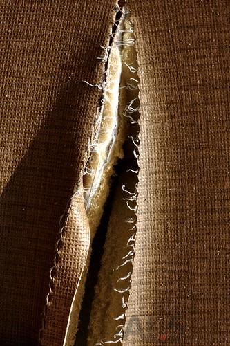光的表情0037(X4)縫IMG_0636.jpg
