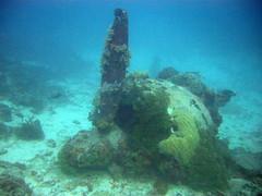 Betty Bomber (mattk1979) Tags: ocean plane island underwater pacific wwii engine scuba diving betty wreck bomber mitsubishi propellor weno chuuk g4m federatedstatesofmicronesia truklagoon