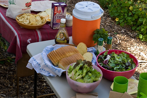 Edible Forest Gardens: lunch!
