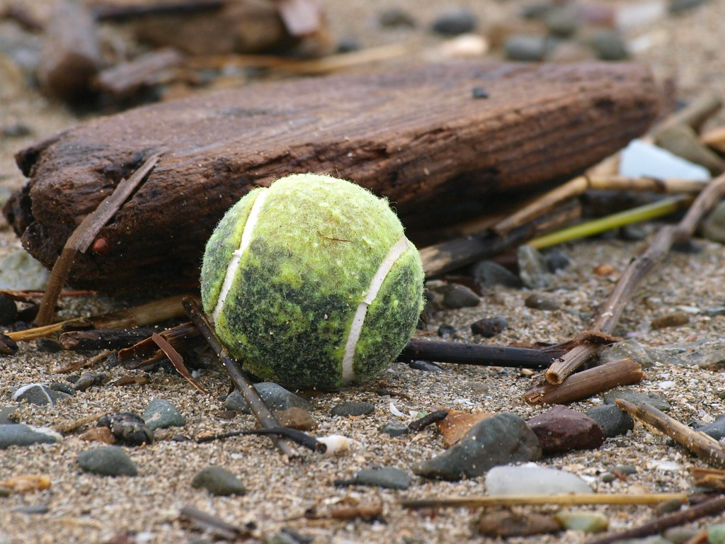 Tennis Ball on Beach