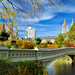 Bow Bridge over The Lake, Central Park, NYC