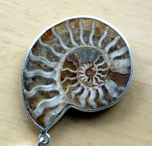 Ammonite pendent