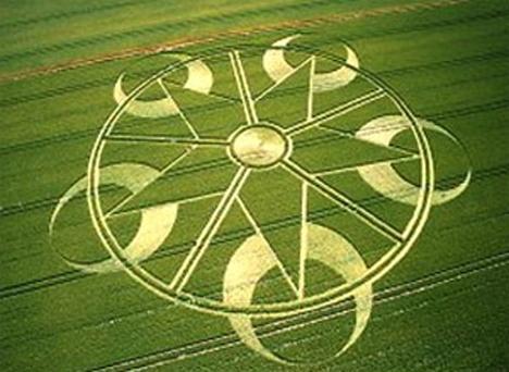 crop_circle_31