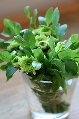 Floral Bouquet Making Basics (risulinna) Tags: summer flower green diy small floralbouquet