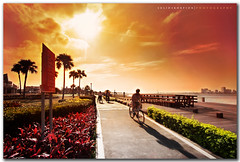 Enjoy The Ride (solidskorpion) Tags: shadow bali sun clouds harbor glare riverside taiwan handheld  rider tobacco 1022mm bycicle   cokin danshuei taipeicounty  filterphotography againsthesun forgotmytripodscrew