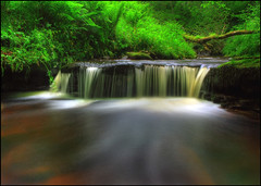 Milton Falls (angus clyne) Tags: trees red green scotland waterfall moss stream milton ferns mossy flikcr wildgarlic harrietfield verygreen glenalmond sweetcicely colorphotoaward pershire vosplusbellesphotos miltonburn logialmond