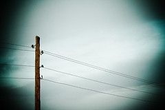 Alumbrando... (InVa10) Tags: light sky españa tree luz portugal field clouds canon arbol eos oak spain poste pole badajoz cables cielo nubes electricity campo electricidad horizont horizonte encina inva 450d