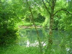 39 - Tything Barn, another lake (emmdee) Tags: wales naturist 2009 tythingbarn naturistcampsite