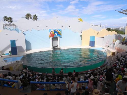 須磨海浜水族園-13