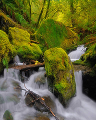 Enchanted Loeb (Michael Bollino) Tags: nature oregon creek outside outdoors coast waterfall nikon post falls southern springbreak cascade d300 loeb michaelbollino
