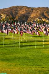 NineEleven (mcshots) Tags: california nyc sky usa grass coast losangeles memorial stock 911 lawn flags malibu socal twintowers remembrance mcshots breeze pepperdine