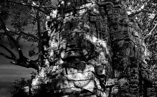 Angkor 25
