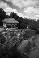 top of  Belvedere castle (Lsuza) Tags: newyorkcity blackandwhite centralpark belvederecastle