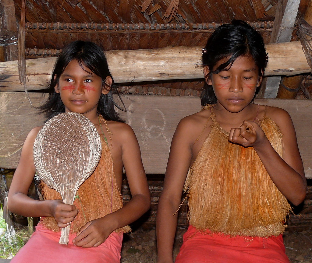 The Worlds Best Photos Of Amazonia And -3764