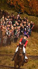 IMG_8037 (Alec Foy) Tags: november horses horse orange spring jump rd 2009 hest dyrehaven grnt hubertus heste efterr jagt