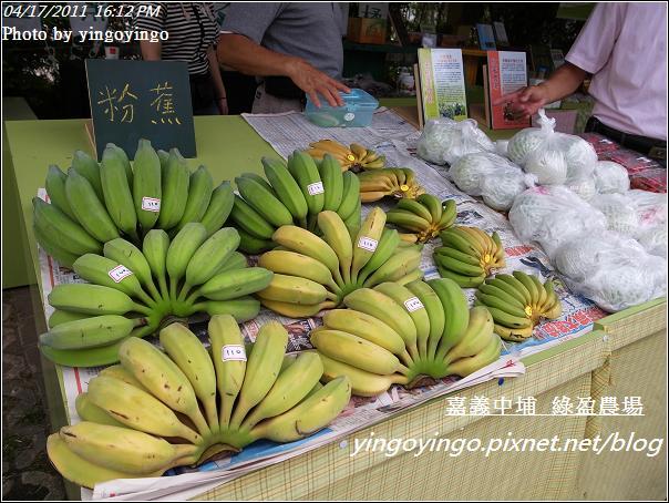 嘉義中埔_綠盈農場20110417_R0019054