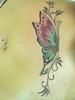 Cadera : Mariposa color con enredadera R&R Tatuajes by