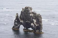 Der Nashornfelsen (Reinhard.Pantke) Tags: island iceland north norden skandinavien reise