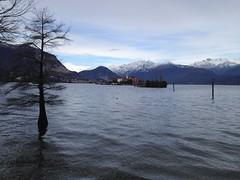 Lago Maggiore, Isolino e Isola Pescatori