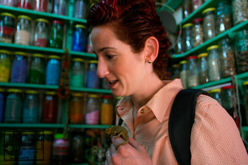 Danielle and a baby Chameleon in a spice shop in Marrakech