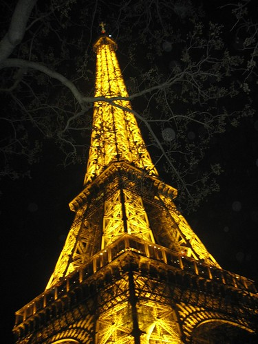 Eiffel tower and branch