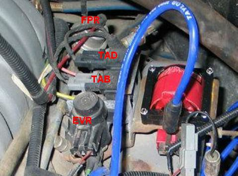 3761815823_ddc0af6b13 smog and egr removal once again! ford truck enthusiasts forums Ford 5.0 Engine Harness at n-0.co