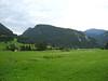 il verde di Valbruna
