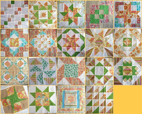 The Wonderful Blocks from the Sweet Dream Quilting Block Ladies!