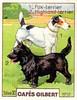 gilbert chiens006