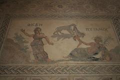 Beautiful Floor Mosaic