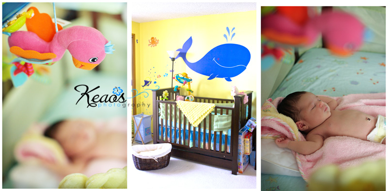 Nursery under the sea