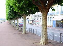 France Chalon-sur-Sane 006 (Lucky B) Tags: france pniche barge bougogne
