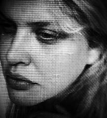 (Samantha West) Tags: portrait woman selfportrait brooklyn self iphone samanthawest thescreenedwindowinmykitchen earlymorningasthesunrose itwasalongnightathome