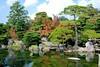 Vườn cảnh(3)