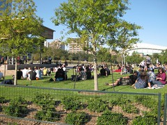 Free live music on Discovery Green (molly_schwartzburg) Tags: houston discoverygreen