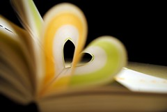 Heart Book (zoeljay) Tags: love book nikon heart d3000 realgem
