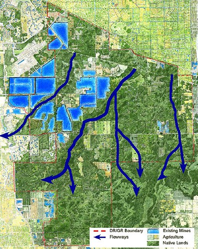 projected wetlands restoration (courtesy of Dover Kohl & Partners)