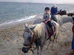 Soso in sealine (alemadi) Tags: king sultan soso doha qatar   alemadi
