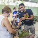 Ocelot Gamboa Wildlife Rescue pandemonio 2017 - 10