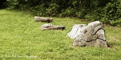 2383aweb (dncngrl2004) Tags: horse castle festival gnome tn tennessee pirates fair knights lance sword ren joust buckle renaissance jousting castell swash gwynn