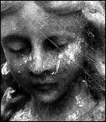 Veiled in Web (Cul 9) Tags: statue cobweb digitalcameraclub blackwhitephotos