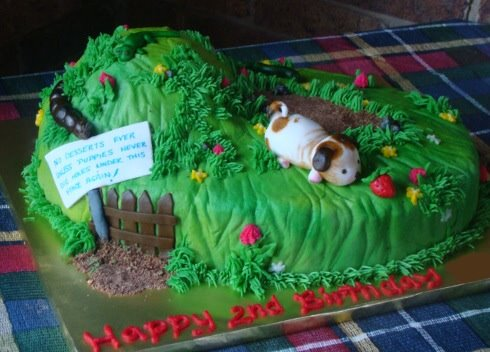 poky puppy cake